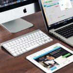 Portal and Website Development